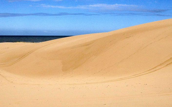 Incroyable safari dans les dunes de Newcastle