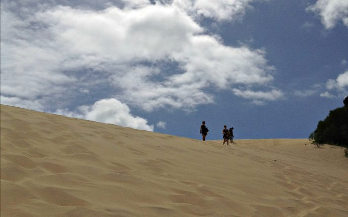 Les dunes de Fraser Island